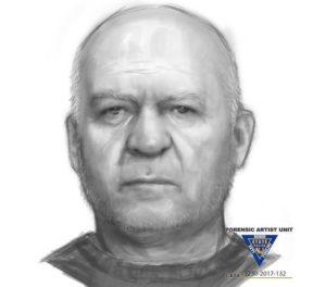 Hanover Township Sex Crime Suspect